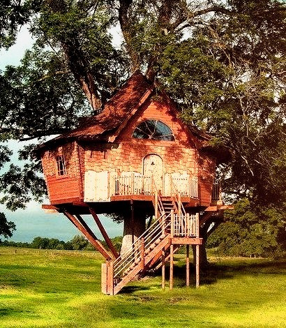 Treehouse, Scotland