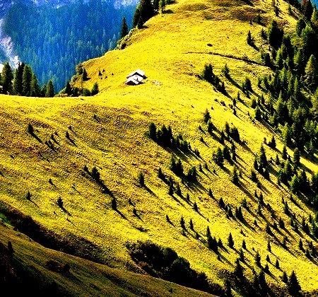 Mountain Meadow, Val di Fassa, Italy