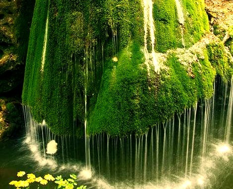 Moss Waterfall, Romania